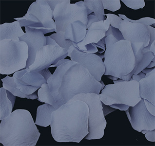light-blue-rose-petals-m.jpg